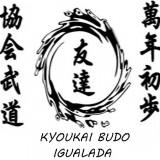 Video de Aikido Tecnico