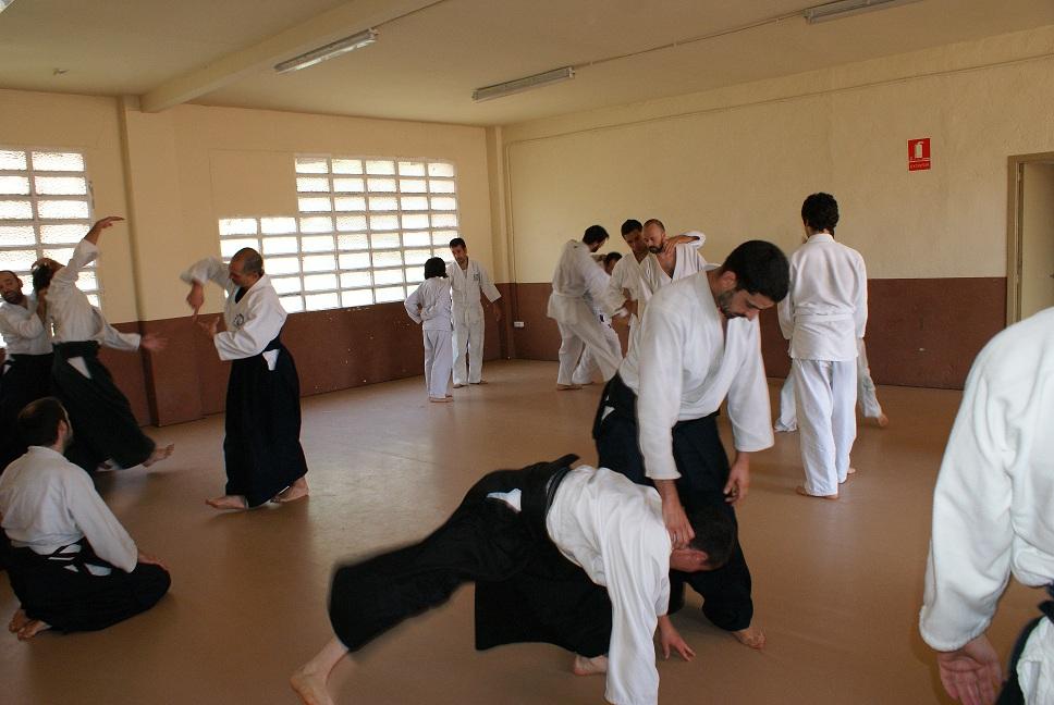 Aikido- Musubi Aikido Terrassa - Kyoukai Budo Igualada (2)