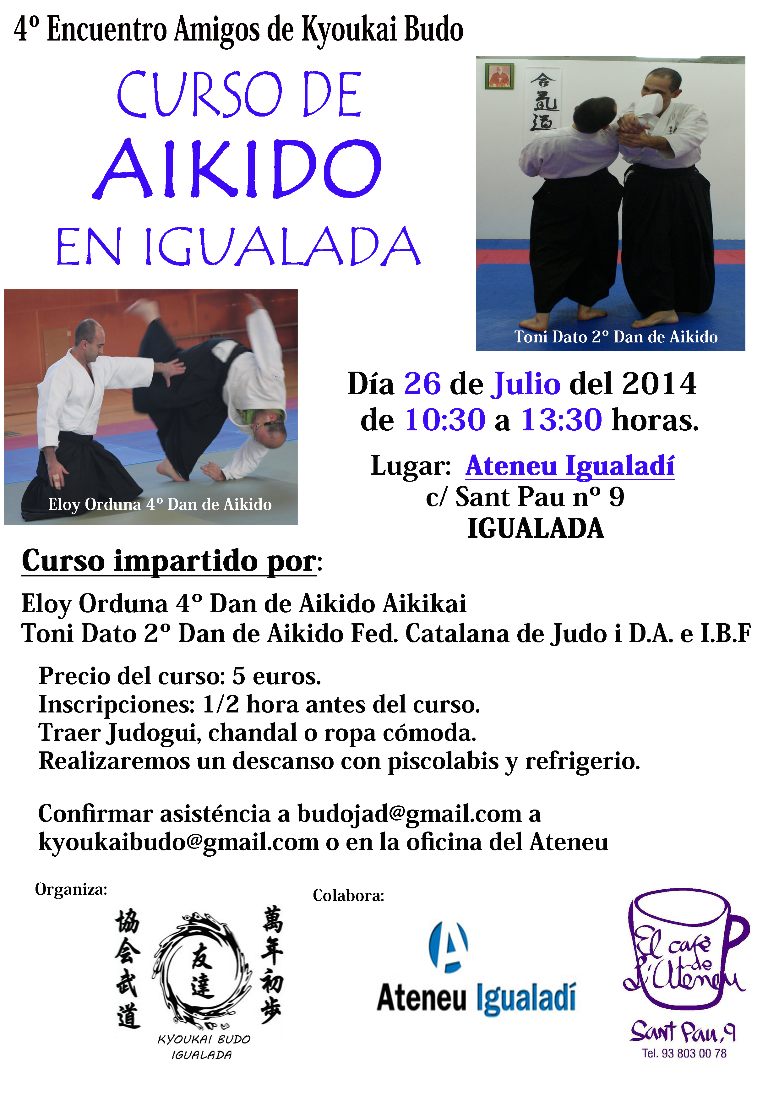 Curso Aikido Julio  2014-1 copia