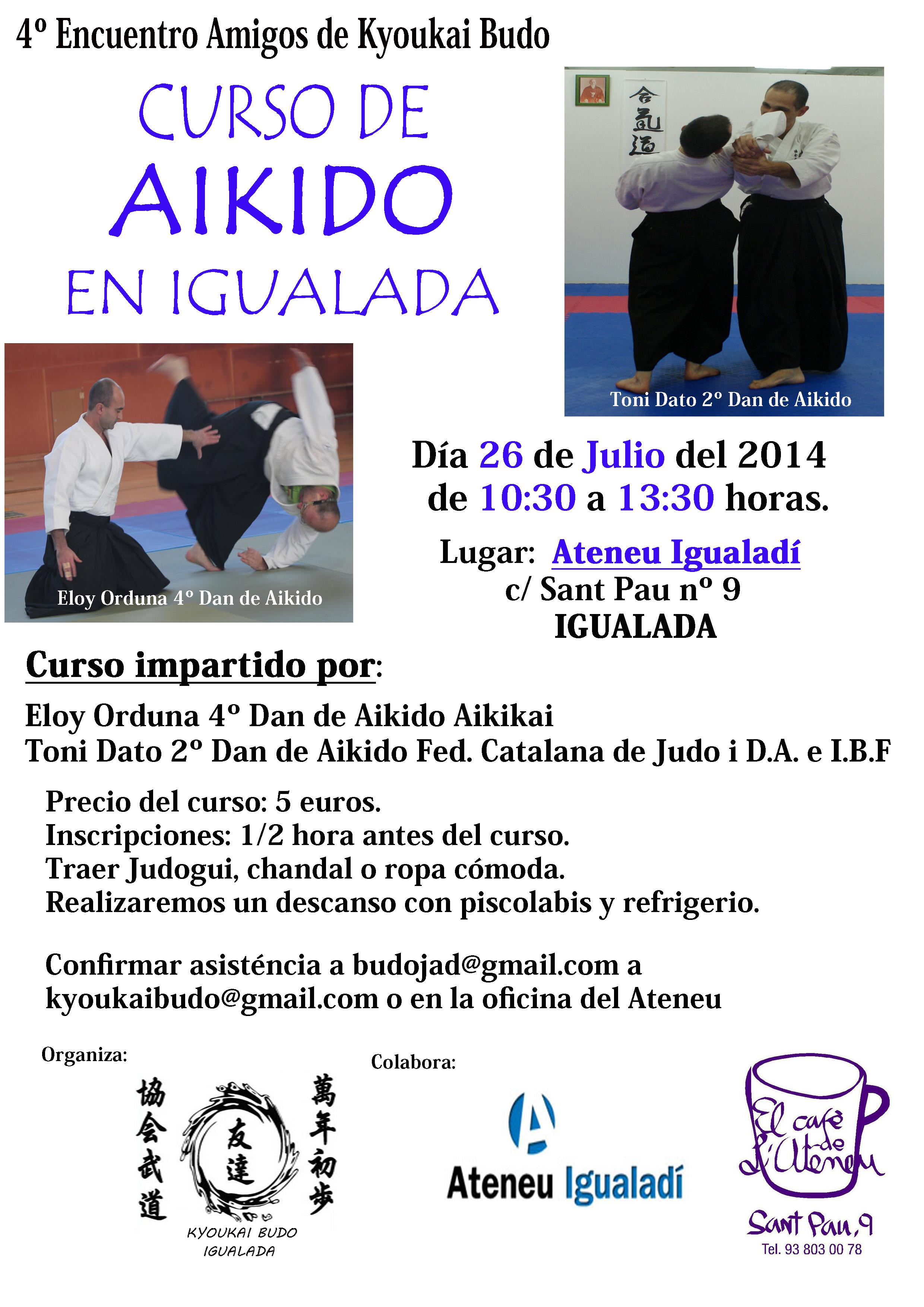 Curso Aikido Julio  2014-1 copia