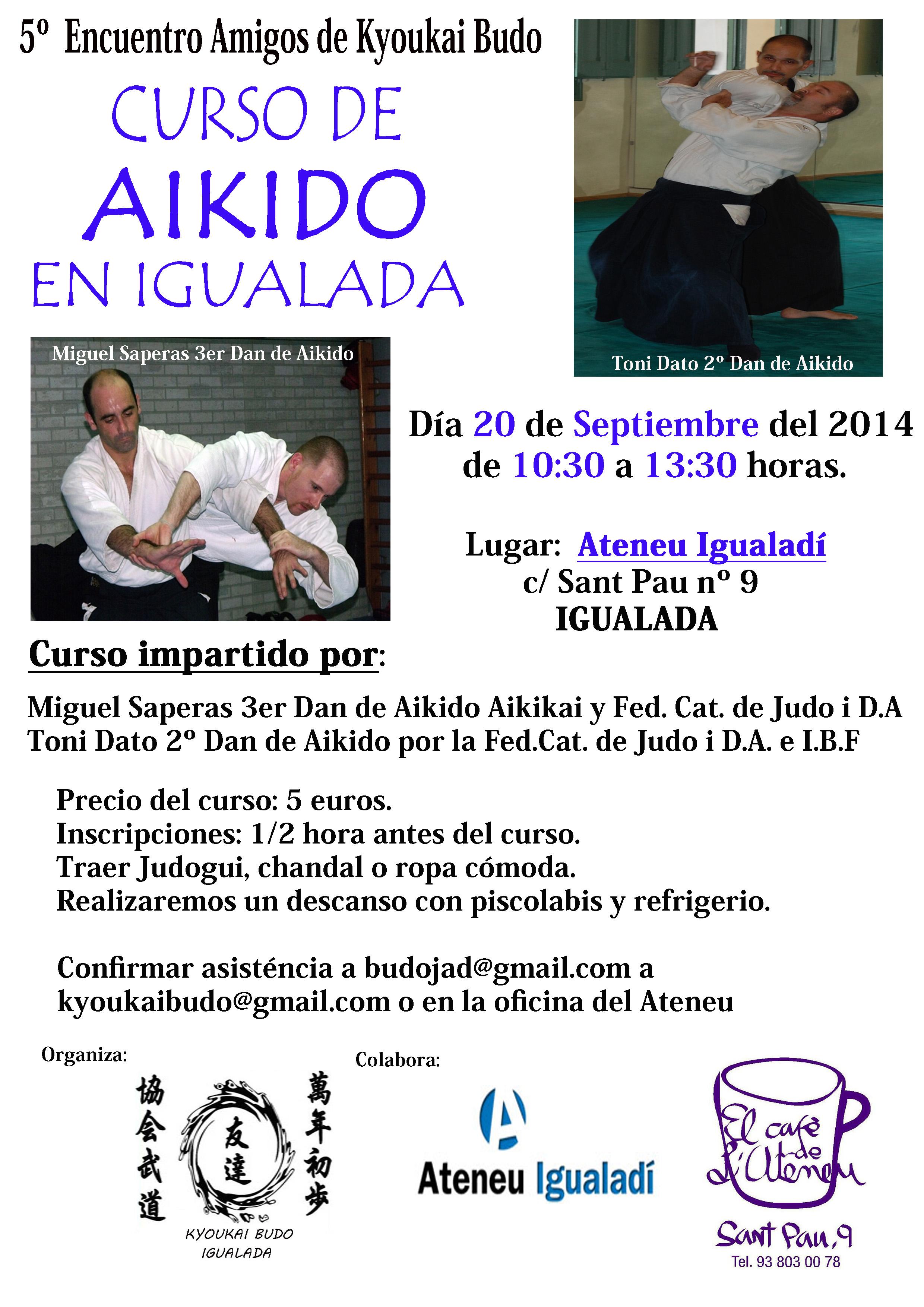 Curso Aikido Septiembre Igualada 2014-1 copia