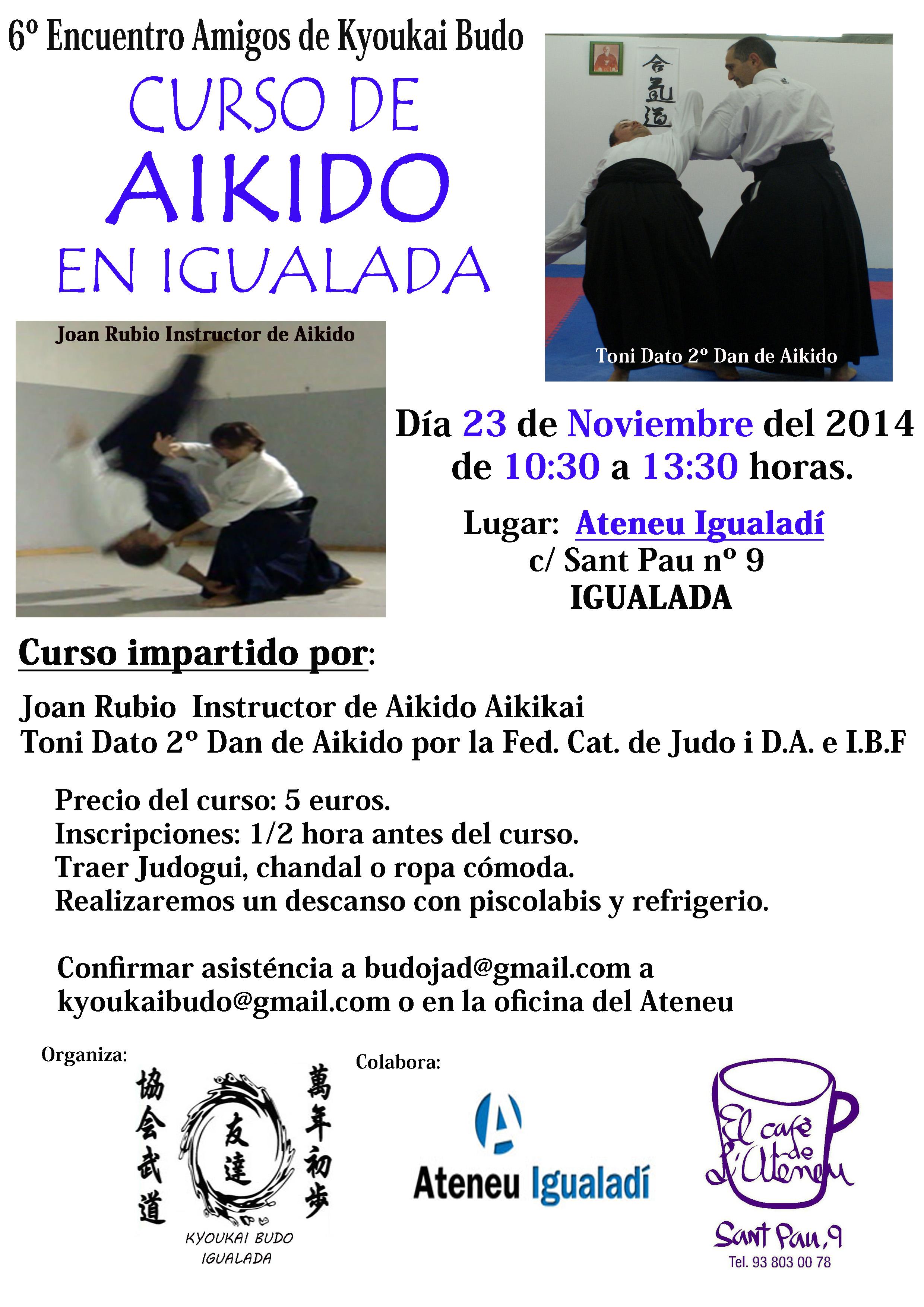 Curso Aikido Noviembre  2014-1 copia