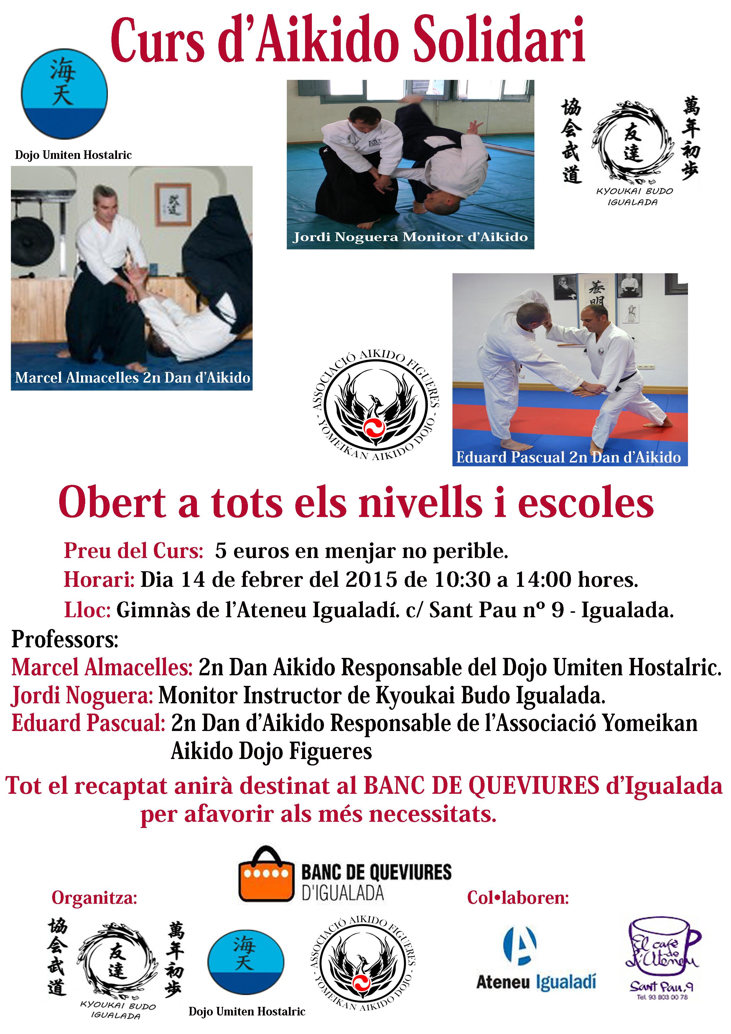 Curso AikidoInterclubs Febrero 2015 . Pers. copia