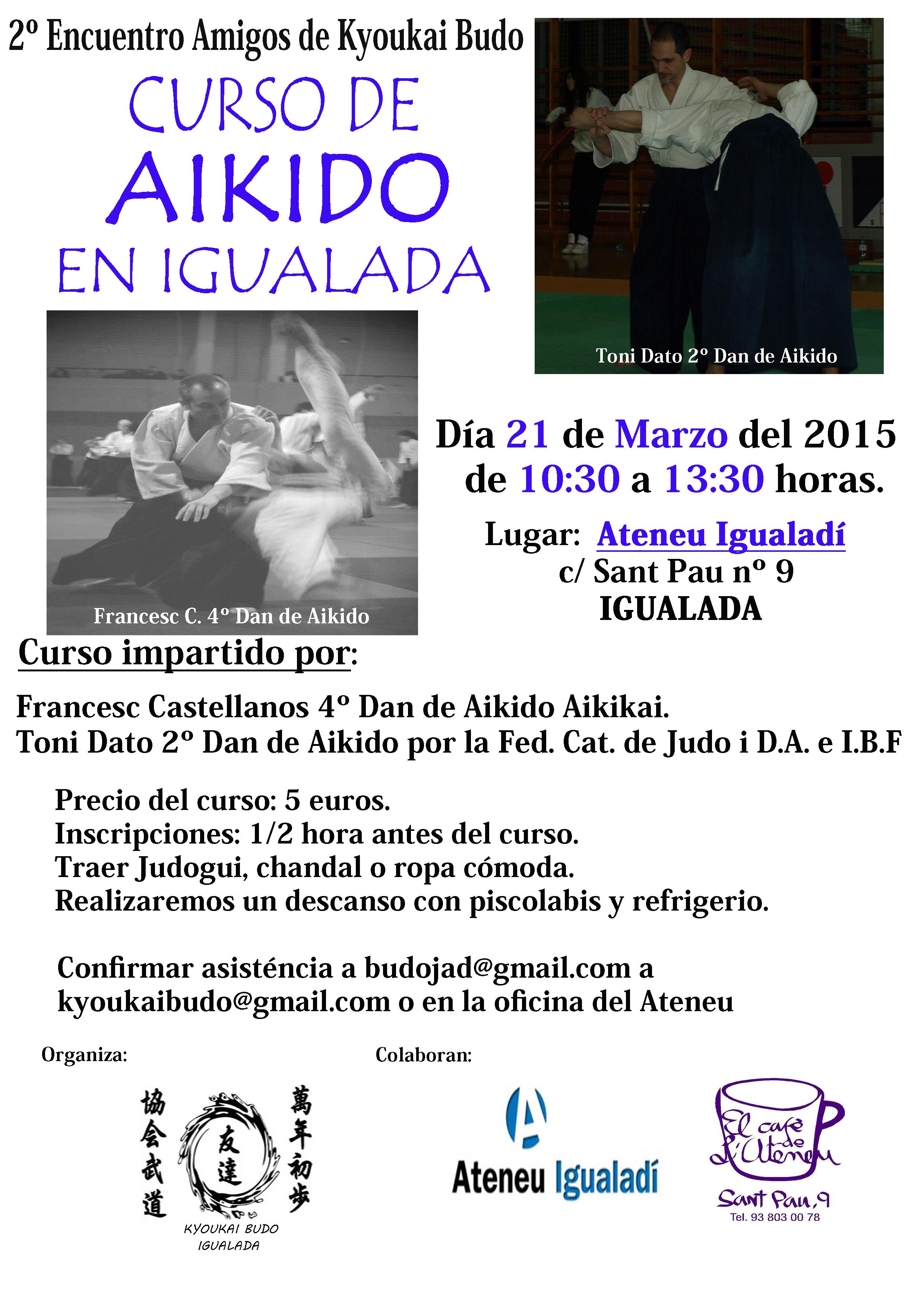 Curso Aikido Marzo 2015-1 copia