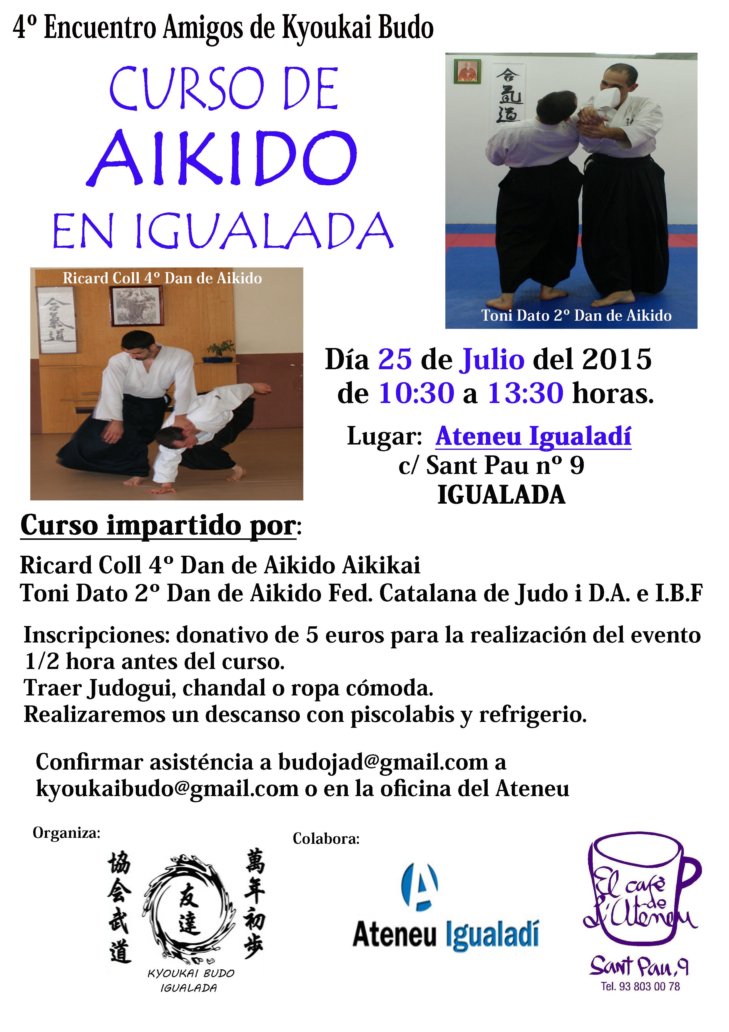 Curso Aikido Julio  2015-1 copia