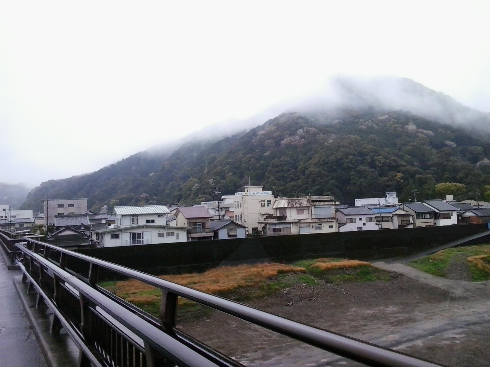 Shingu2