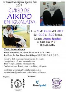 curso-aikido-enero-igualada-2017-copia