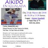 Vídeo y Fotos del 2º Encuentro de Aikido 2018