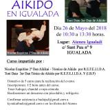 Fotos y Vídeo del 3er Encuentro de Aikido 2018